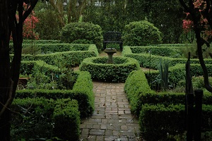 Wing haven gardens and bird sanctuary charlotte events - Wing haven gardens and bird sanctuary ...